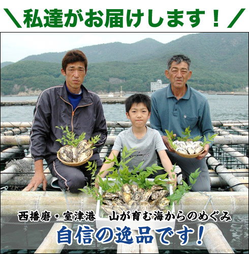 牡蠣の通信販売を送料無料で